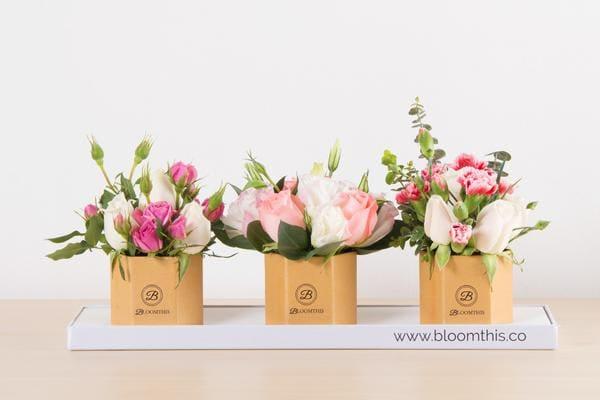 BloomThis Content Flower Trio